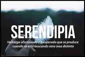 Mañana se estrena Serendipia en el festival Guadalajara en Negro, a las 19:00 horas 1