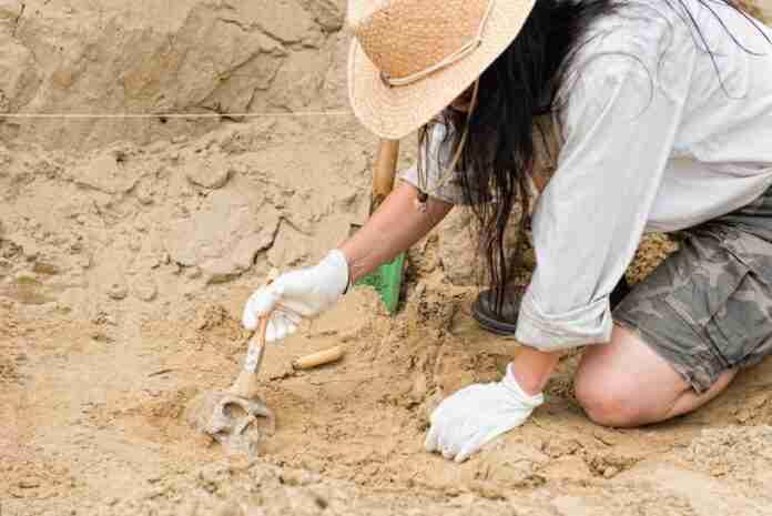 clm actividades dia de la arqueologia