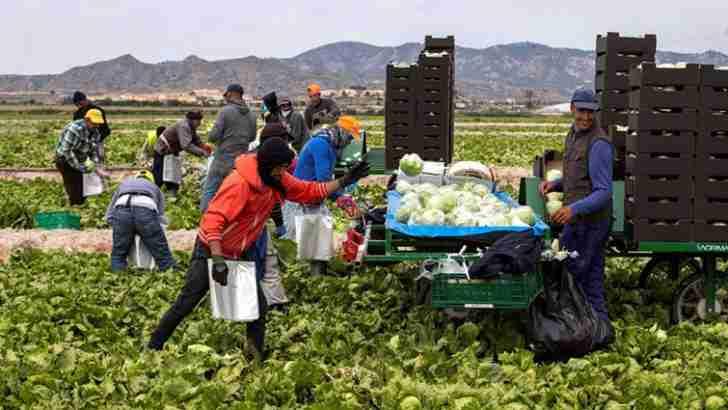 UGT CLM pide el refuerzo de políticas de empleo en los presupuestos y ser cautos con los aparentes buenos datos de empleo 1