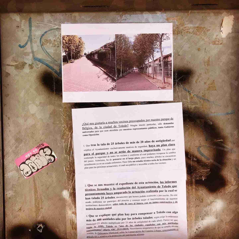 Tala de árboles y planificación Parque de Bélgica en Toledo 12