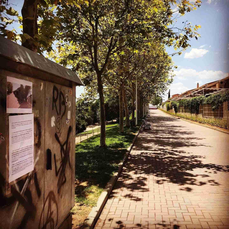 Tala de árboles y planificación Parque de Bélgica en Toledo 11