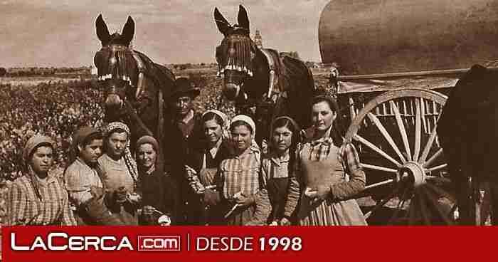 Por el Día de la Fotografía, realizan una exposición virtual de instantáneas del Archivo de la Imagen de Castilla-La Mancha 1