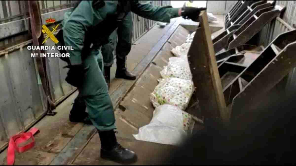 guardia civil desmantela organizacion marihuana cocaina