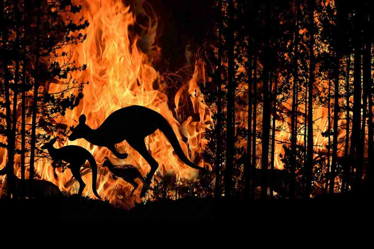 megaincendios en australia
