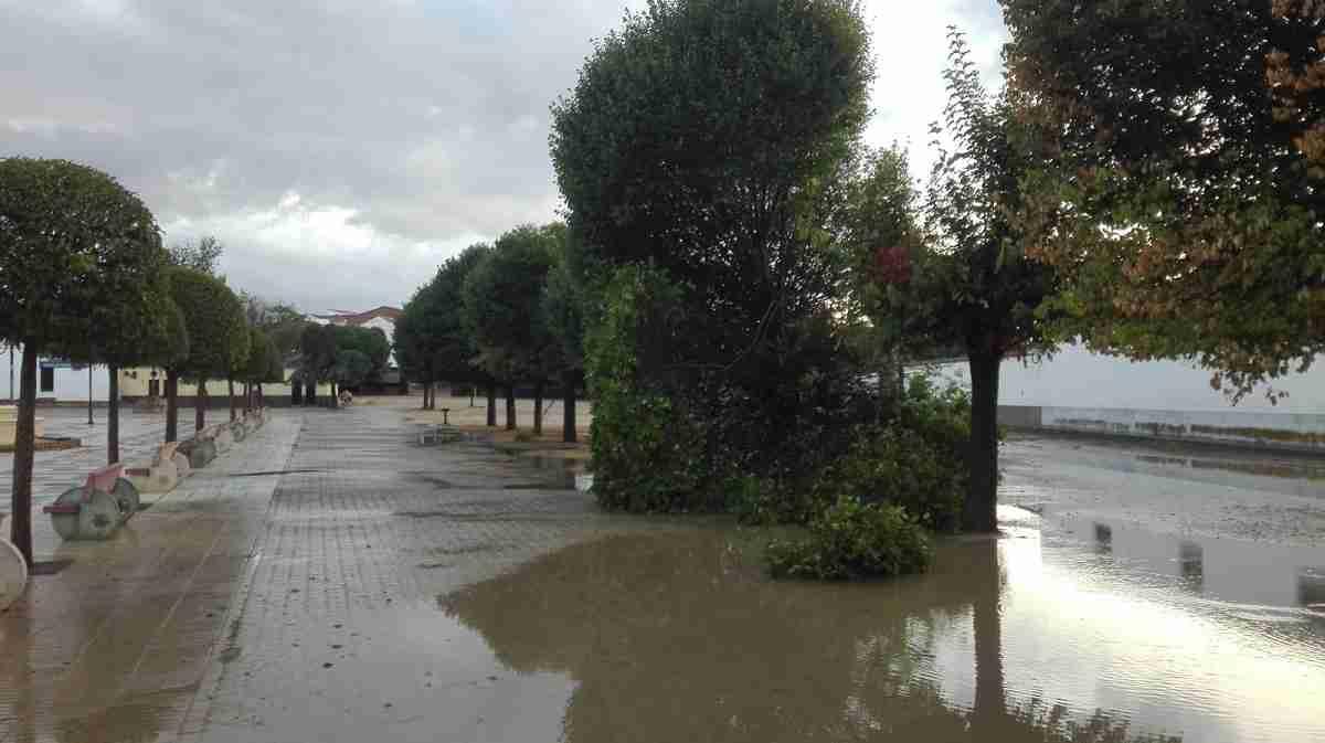 Arboles caidos e inundaciones por todo el pueblo de Calzada de Calatrava 1