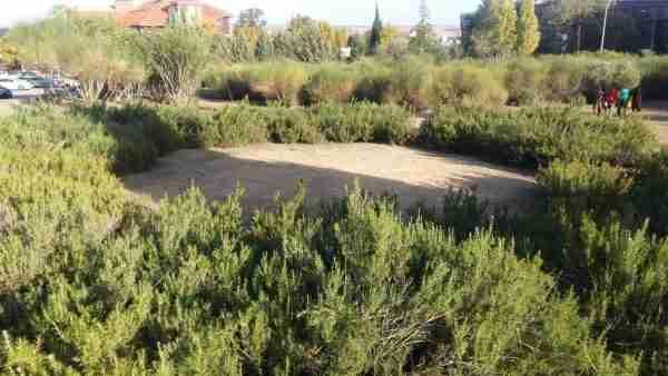 Jardines del Rio Estenilla frente Consejería de Fomento 02