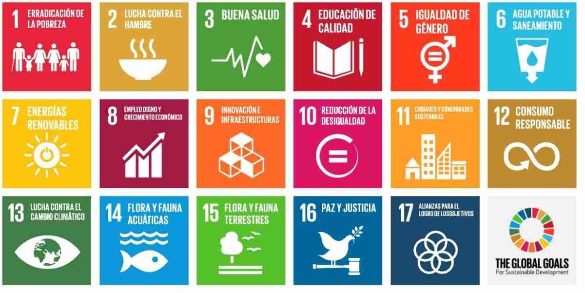 Castilla-La Mancha cuenta con una situación desigual respecto a objetivos de Desarrollo Sostenible (ODS) de Naciones Unidas 2