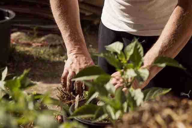 Erasmus agrario y las visitas a explotaciones modelo 1