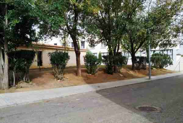 Calle Girasol Azucaica Ahora