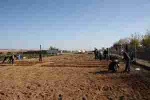 Ocho alumnos se reciclaron profesionalmente en la Escuela de Agroecocultura de Torralba de Calatrava 1