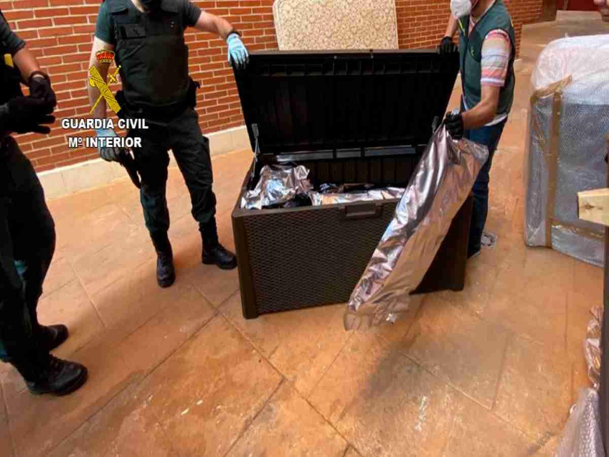 La Guardia Civil ha detenido a 14 personas en una operación contra el cultivo, venta y tráfico de marihuana y cocaína 3