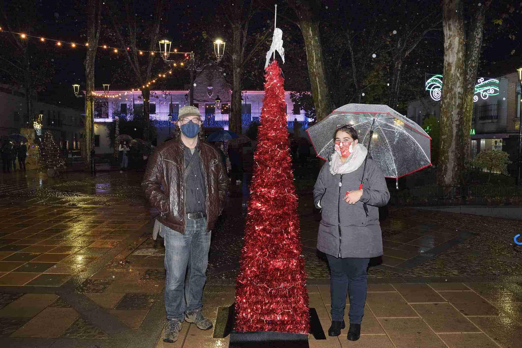 Cerca de una veintena de árboles navideños decoran la Glorieta de Argamasilla de Alba 5