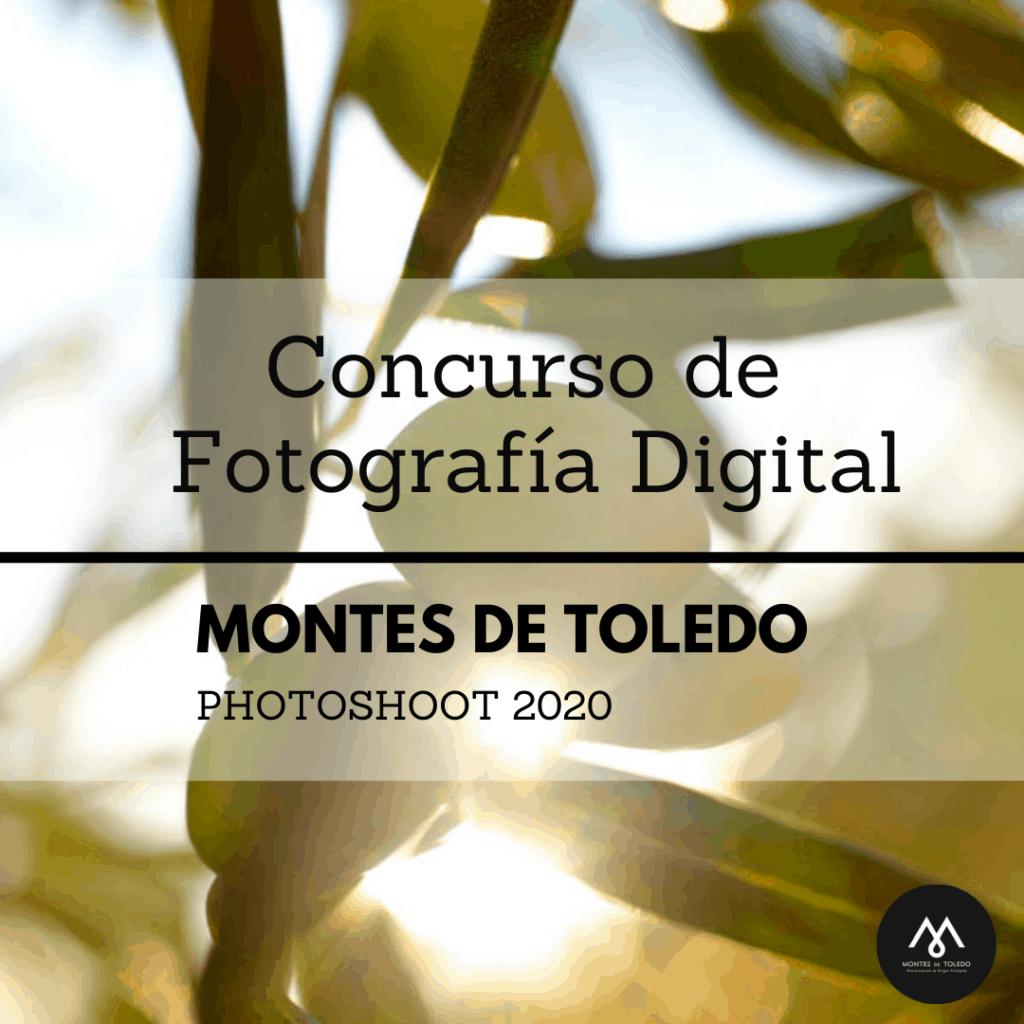 El concurso de fotografía digital 2020 de la Denominación de Origen Montes de Toledo ya tiene ganadores 4