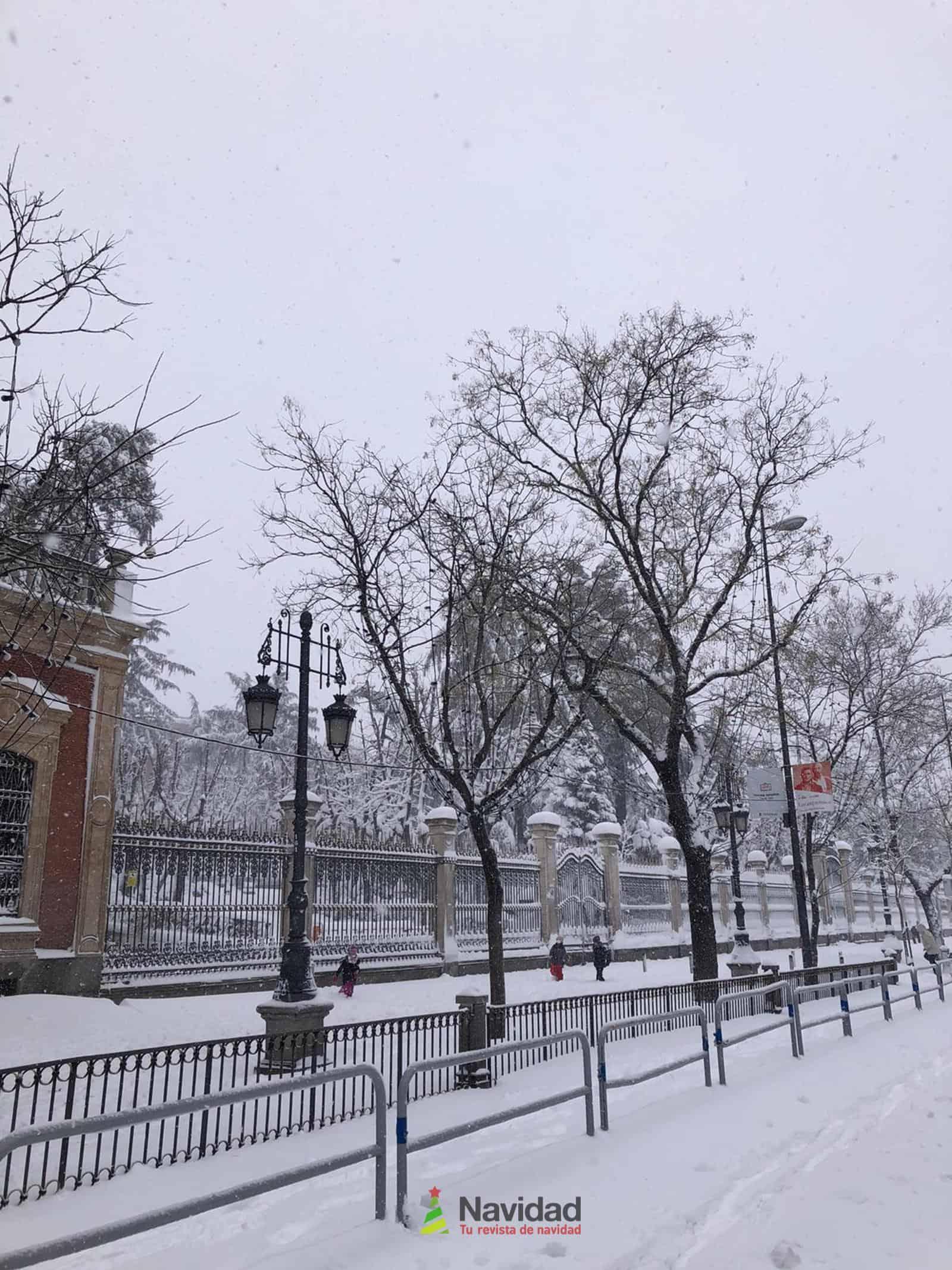 Fotografías de la nevada de enero en Madrid (España) 86
