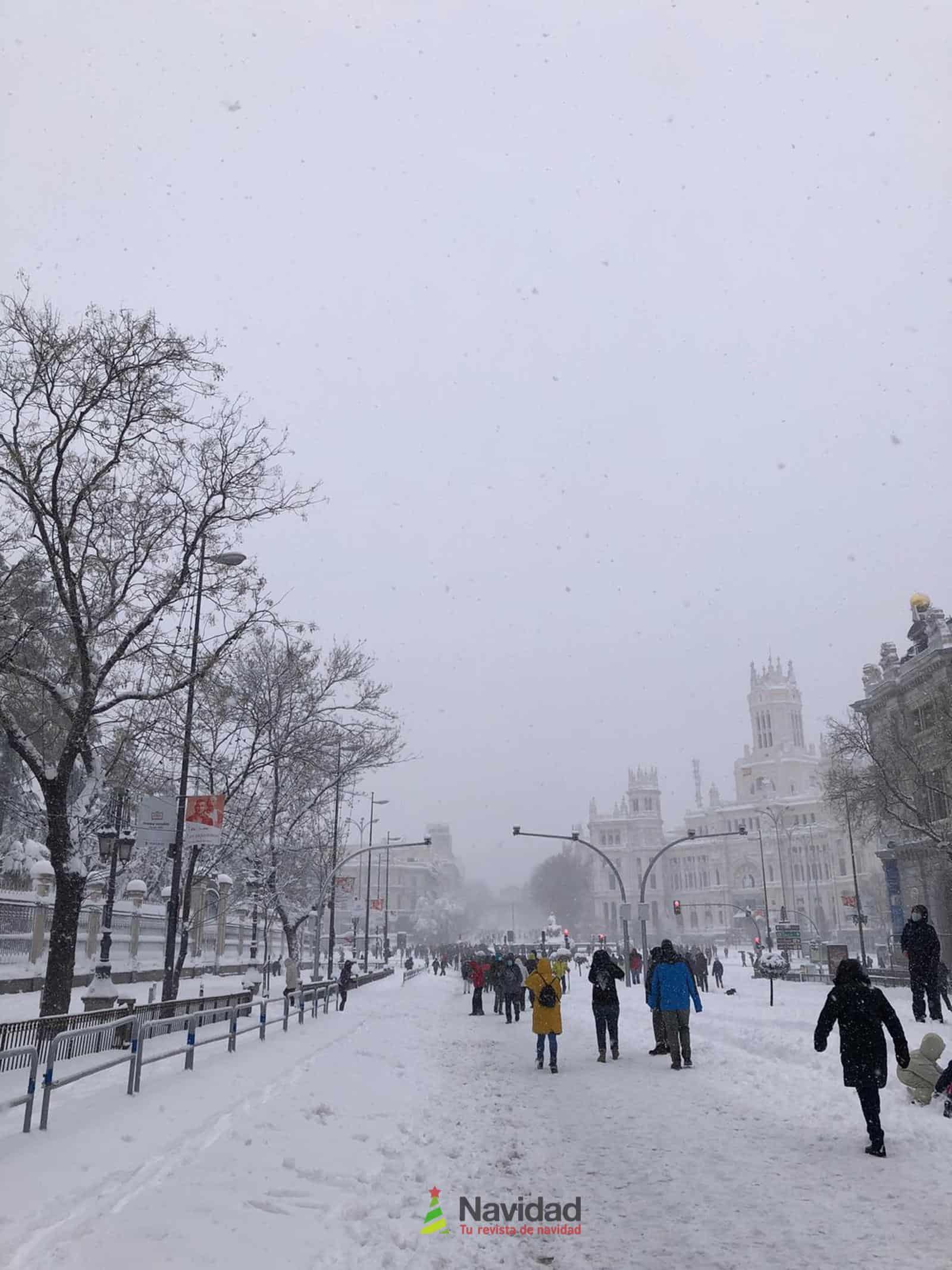 Fotografías de la nevada de enero en Madrid (España) 89