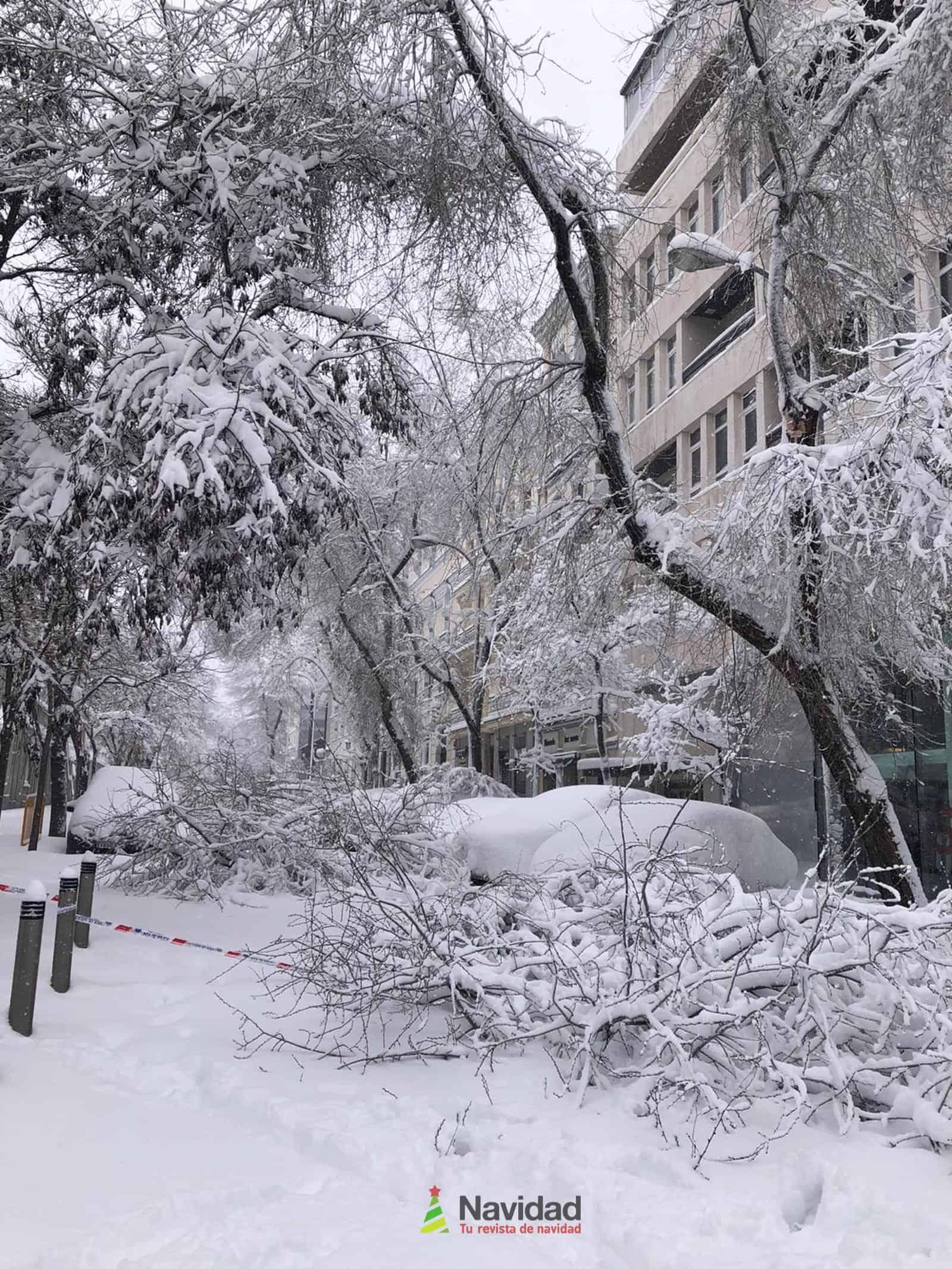 Fotografías de la nevada de enero en Madrid (España) 77