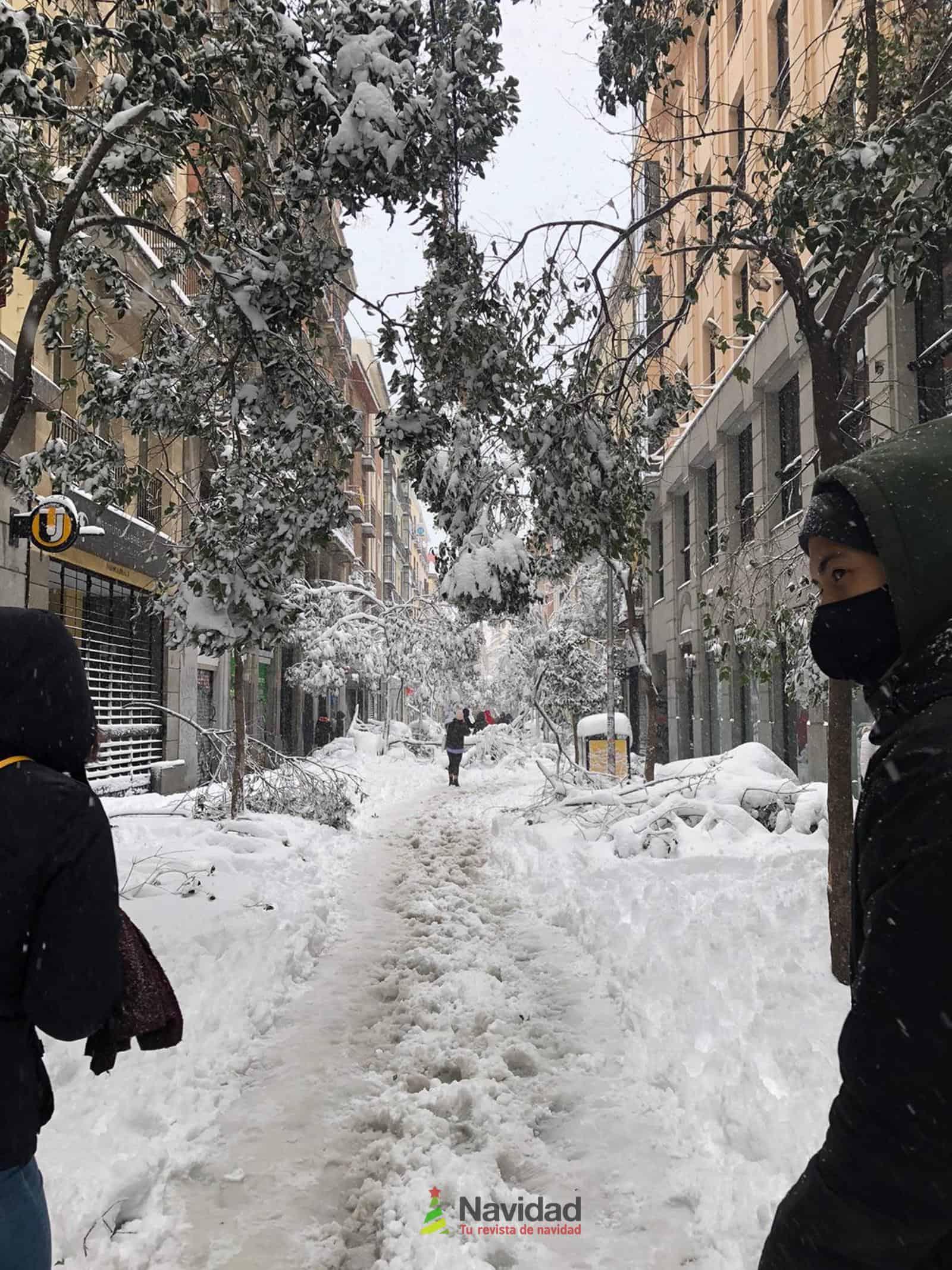 Fotografías de la nevada de enero en Madrid (España) 95