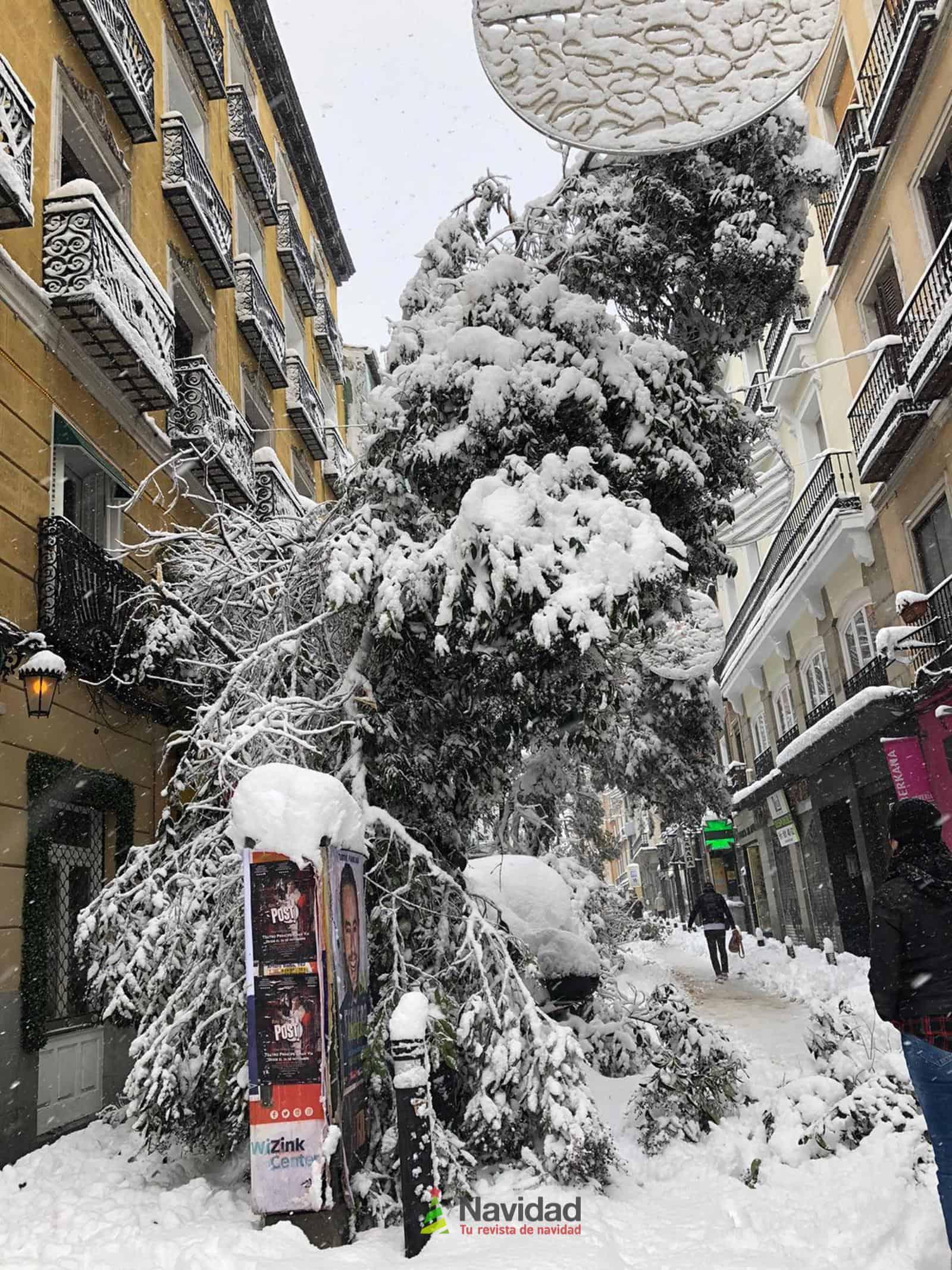 Fotografías de la nevada de enero en Madrid (España) 97