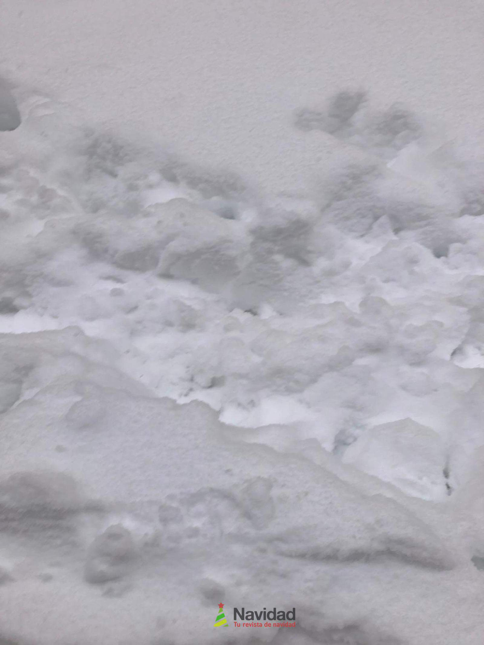 Fotografías de la nevada de enero en Madrid (España) 174