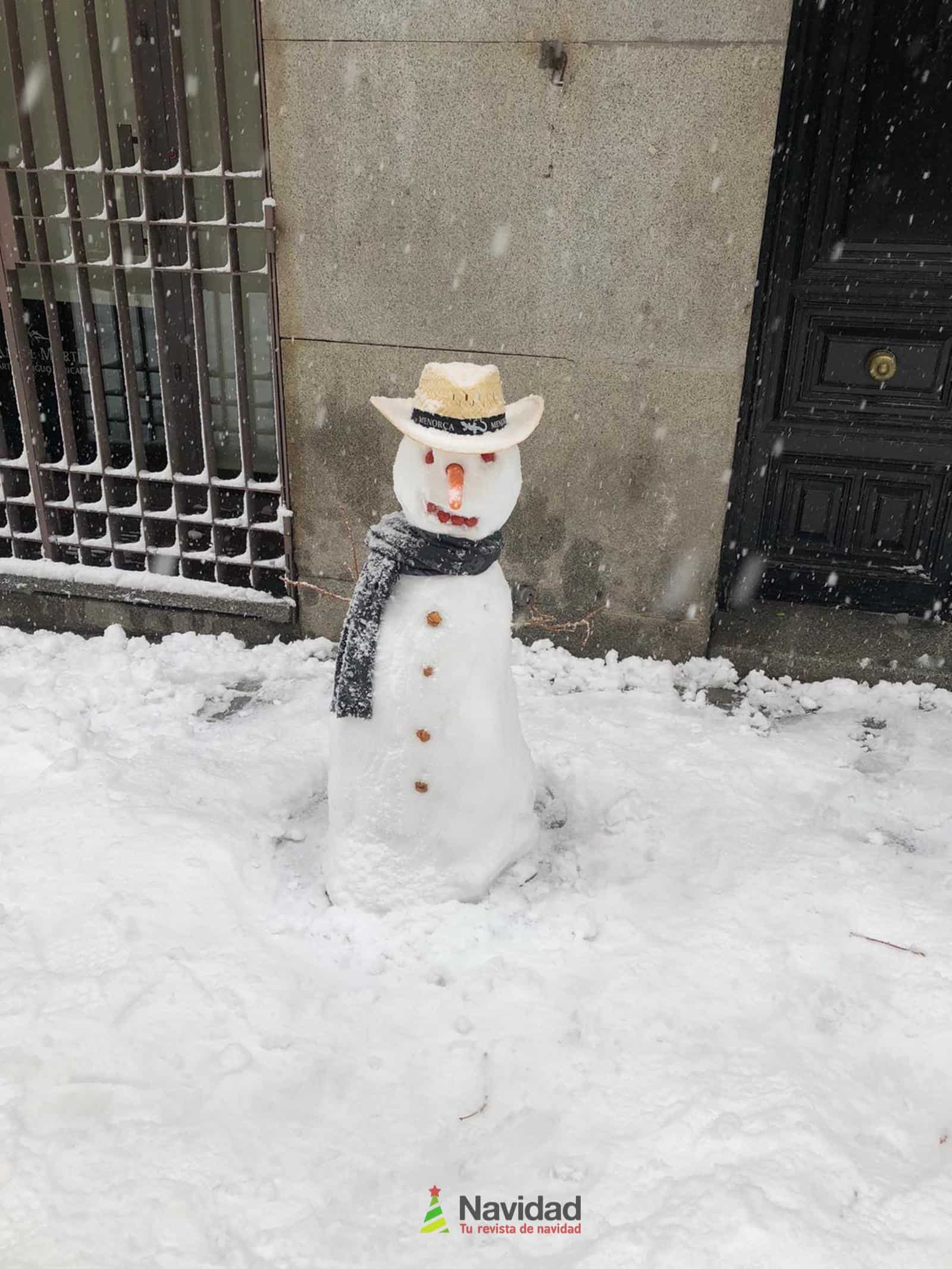 Fotografías de la nevada de enero en Madrid (España) 102