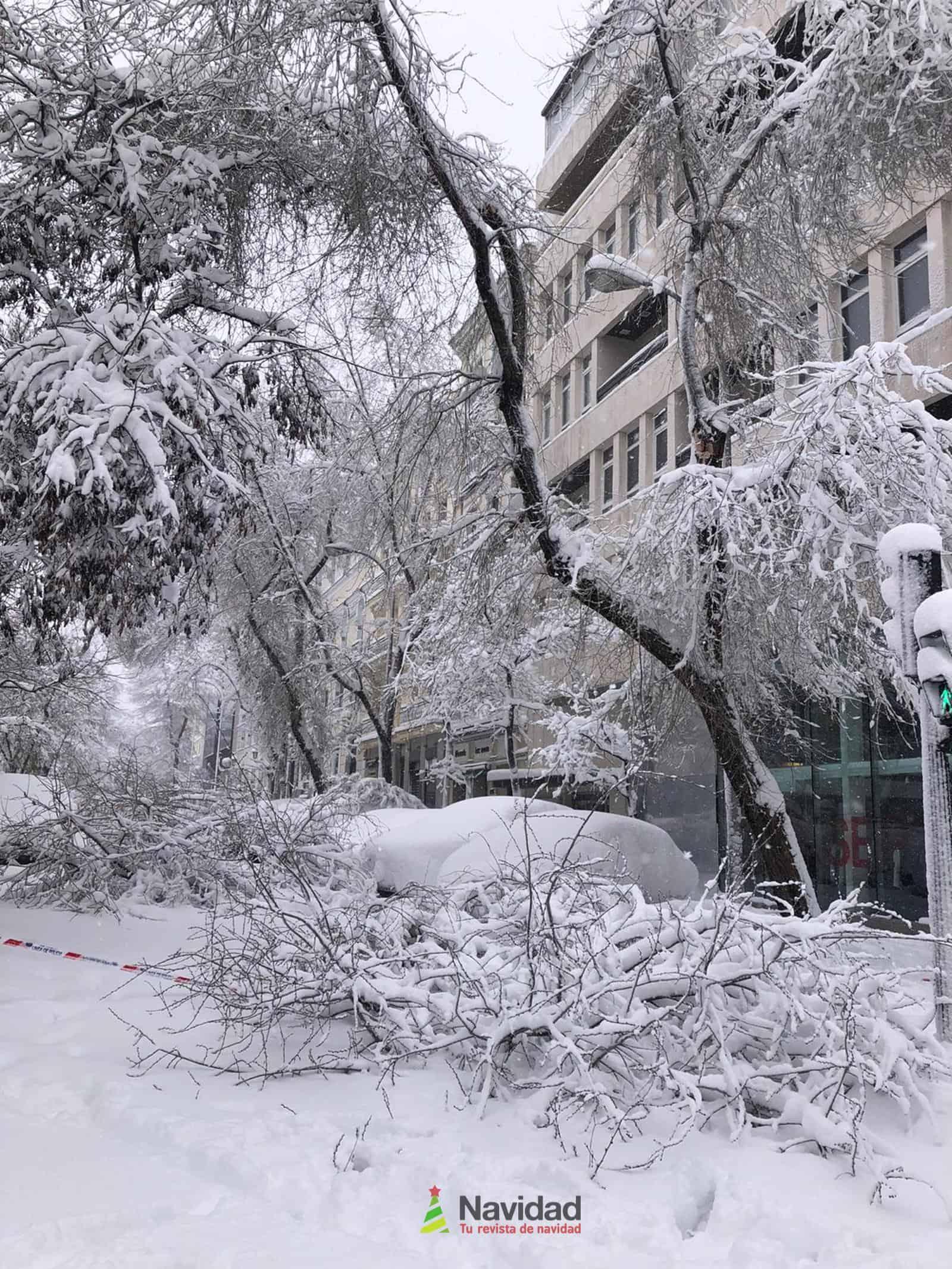 Fotografías de la nevada de enero en Madrid (España) 78