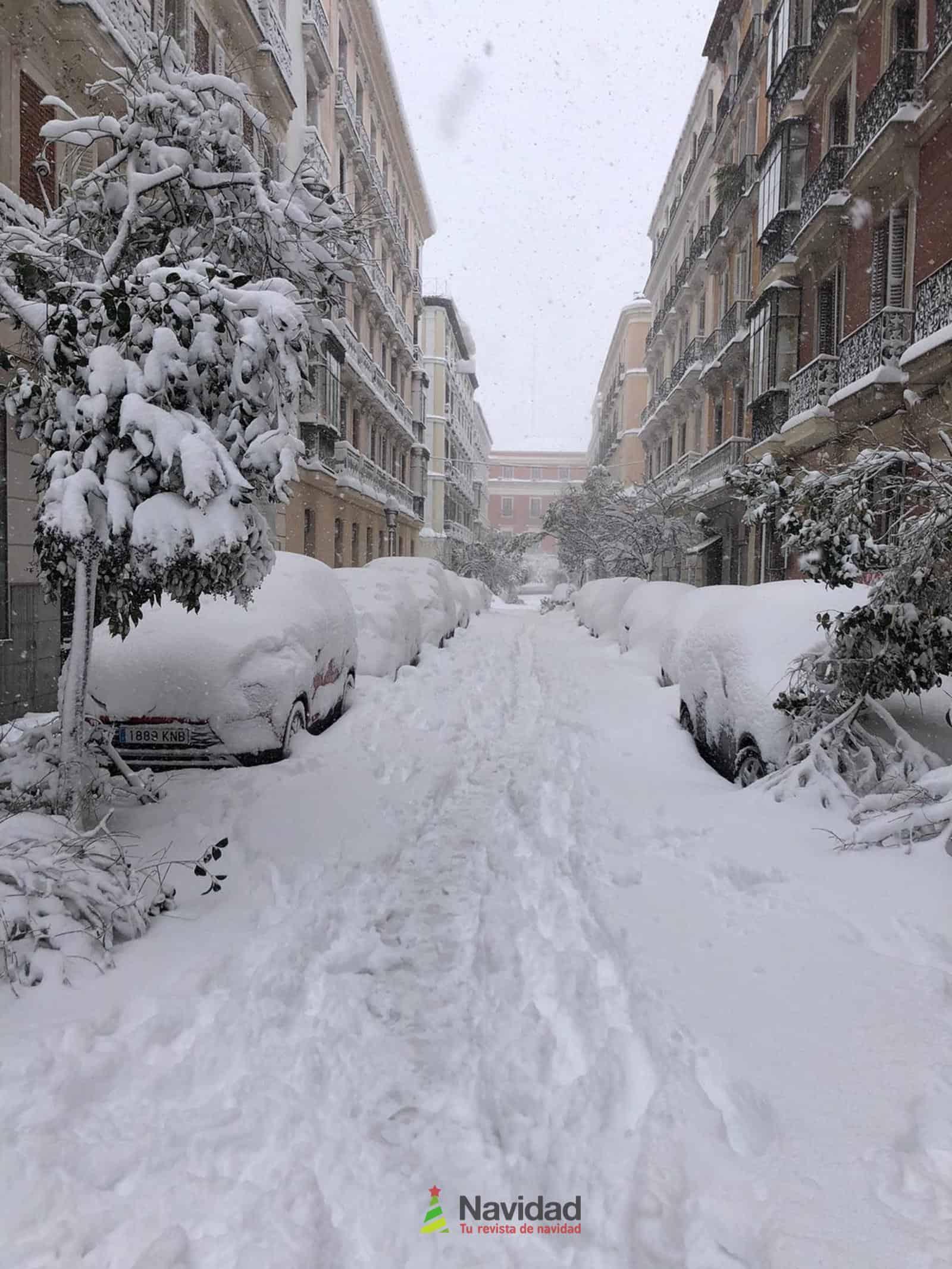 Fotografías de la nevada de enero en Madrid (España) 103