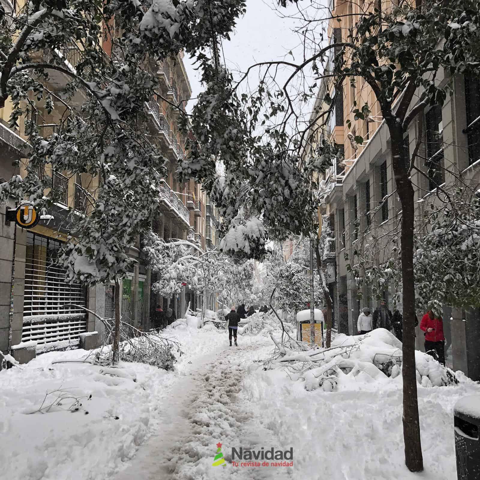 Fotografías de la nevada de enero en Madrid (España) 110