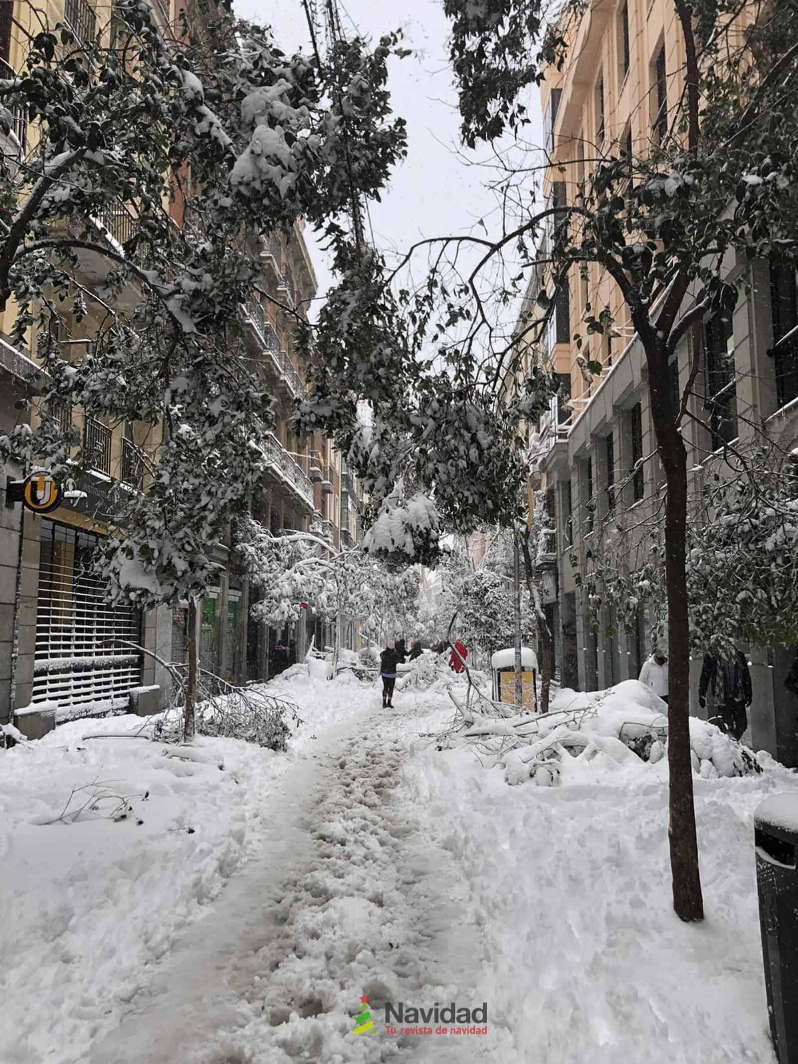Fotografías de la nevada de enero en Madrid (España) 111