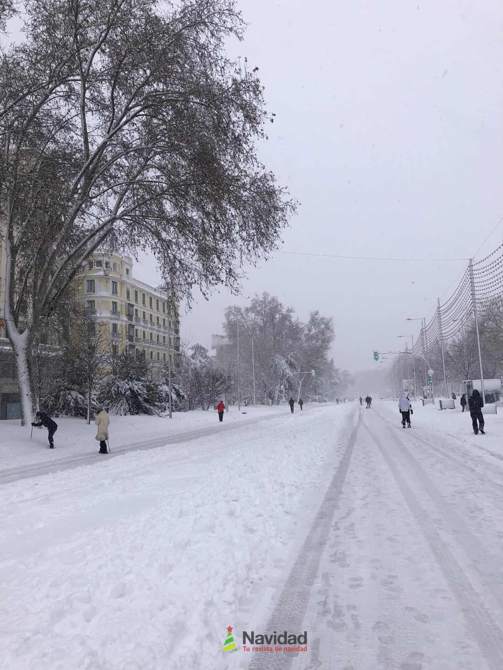 Fotografías de la nevada de enero en Madrid (España) 154