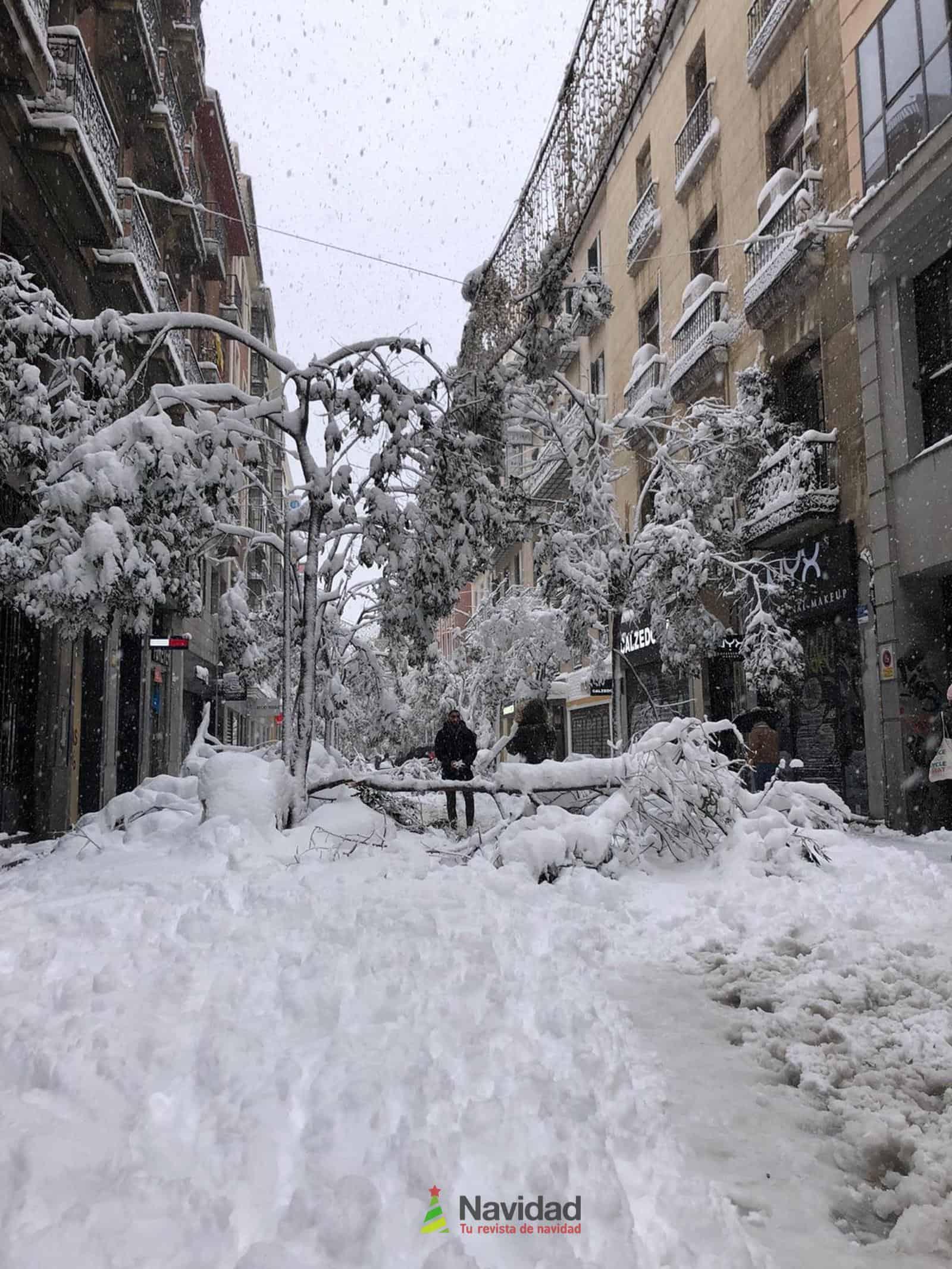 Fotografías de la nevada de enero en Madrid (España) 113
