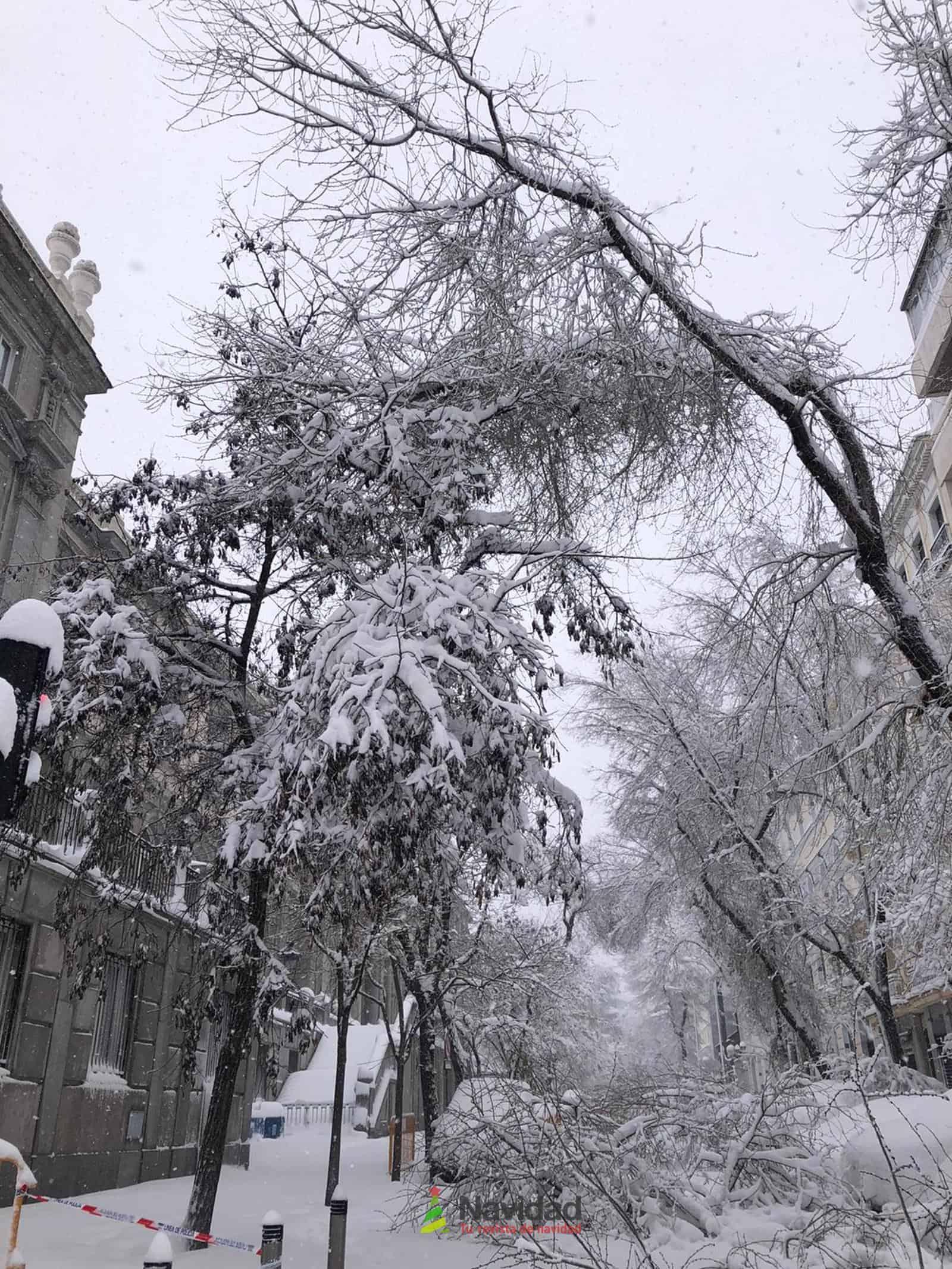 Fotografías de la nevada de enero en Madrid (España) 80