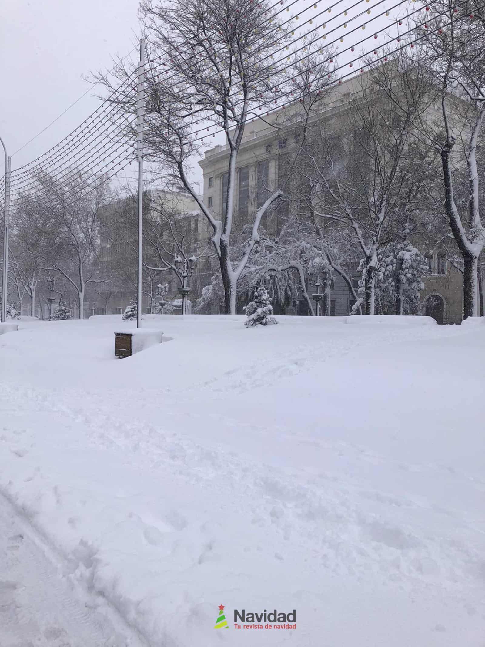 Fotografías de la nevada de enero en Madrid (España) 81