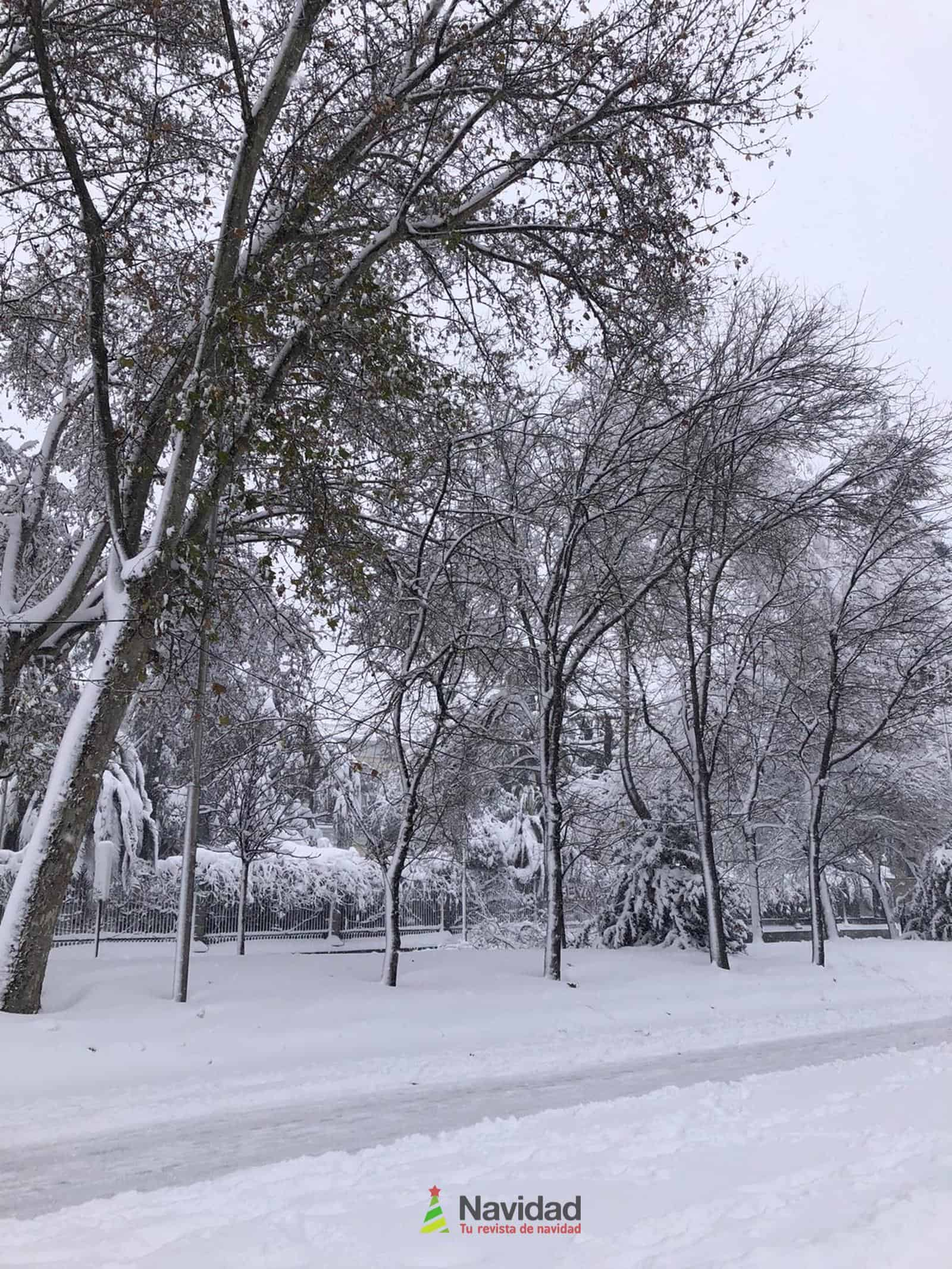 Fotografías de la nevada de enero en Madrid (España) 82
