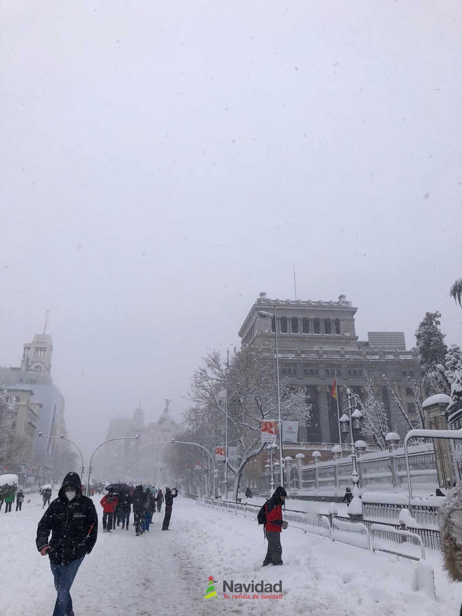 Fotografías de la nevada de enero en Madrid (España) 83