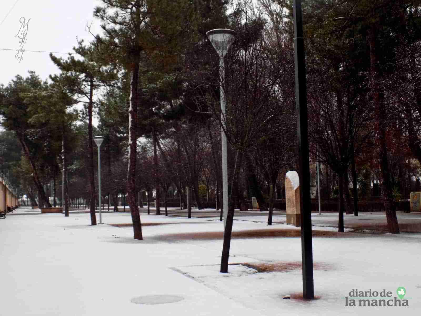 Fotografías de la primera nevada de 2021 en Tomelloso 31