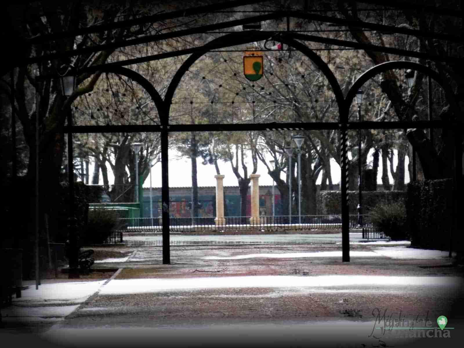 Fotografías de la primera nevada de 2021 en Tomelloso 33