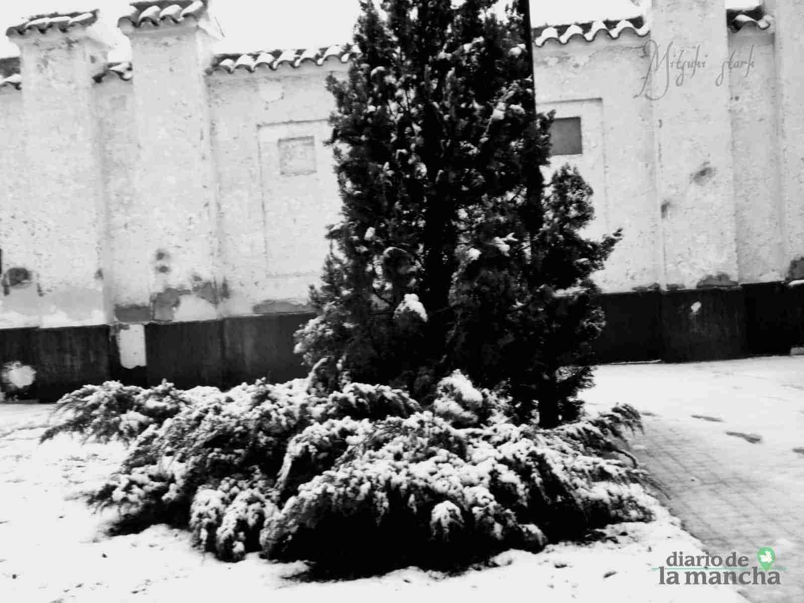 Fotografías de la primera nevada de 2021 en Tomelloso 36