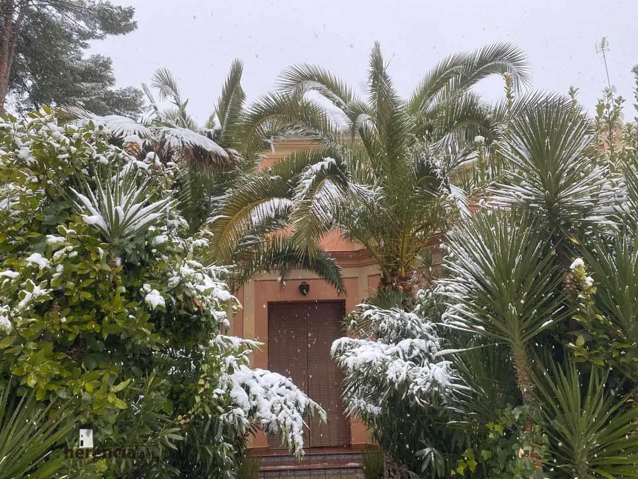 Fotografías de la nevada en Herencia (Ciudad Real) 53