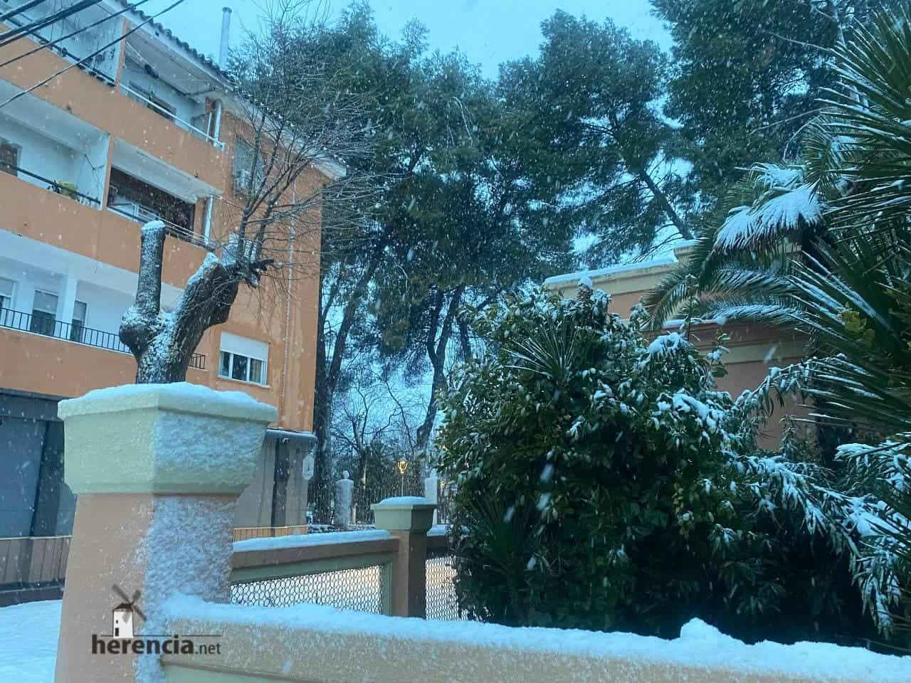 Fotografías de la nevada en Herencia (Ciudad Real) 59