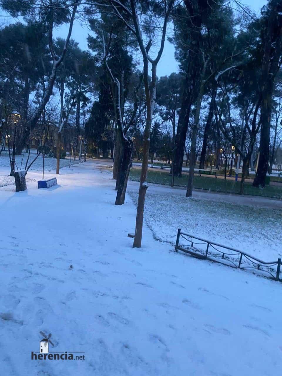 Fotografías de la nevada en Herencia (Ciudad Real) 64