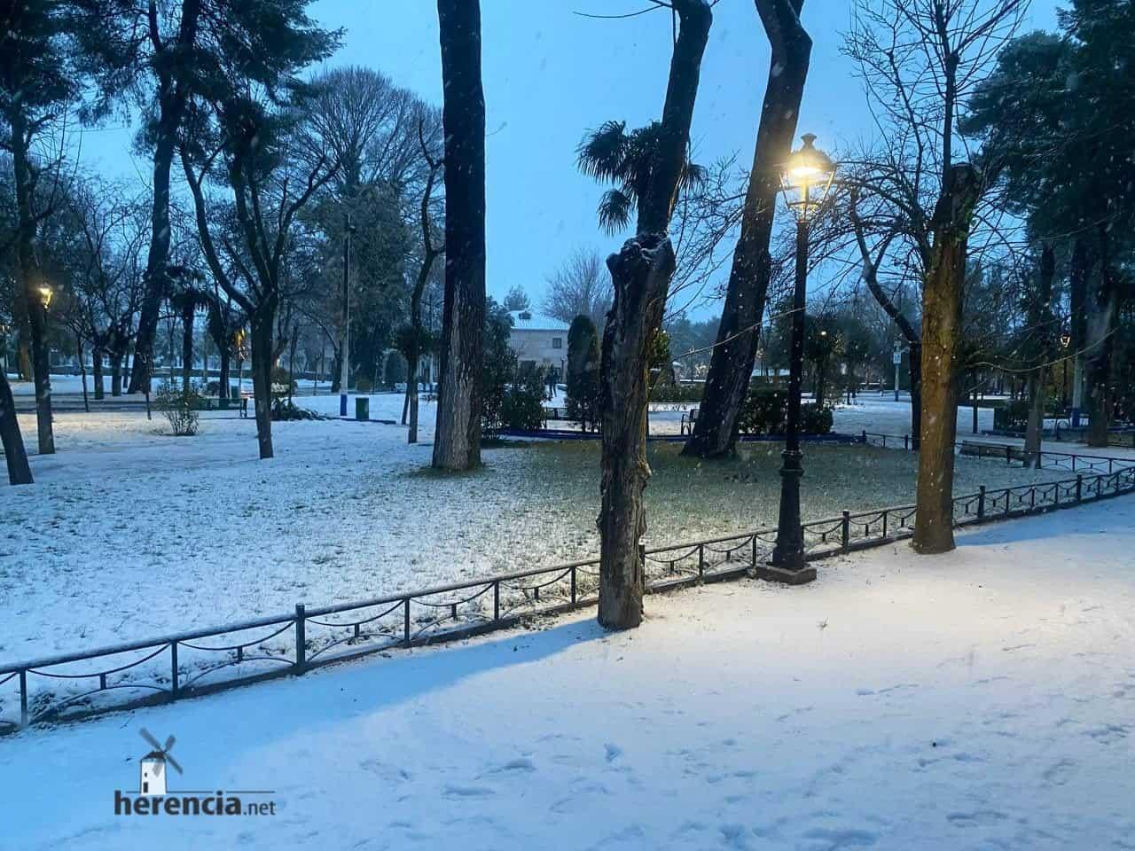 Fotografías de la nevada en Herencia (Ciudad Real) 65