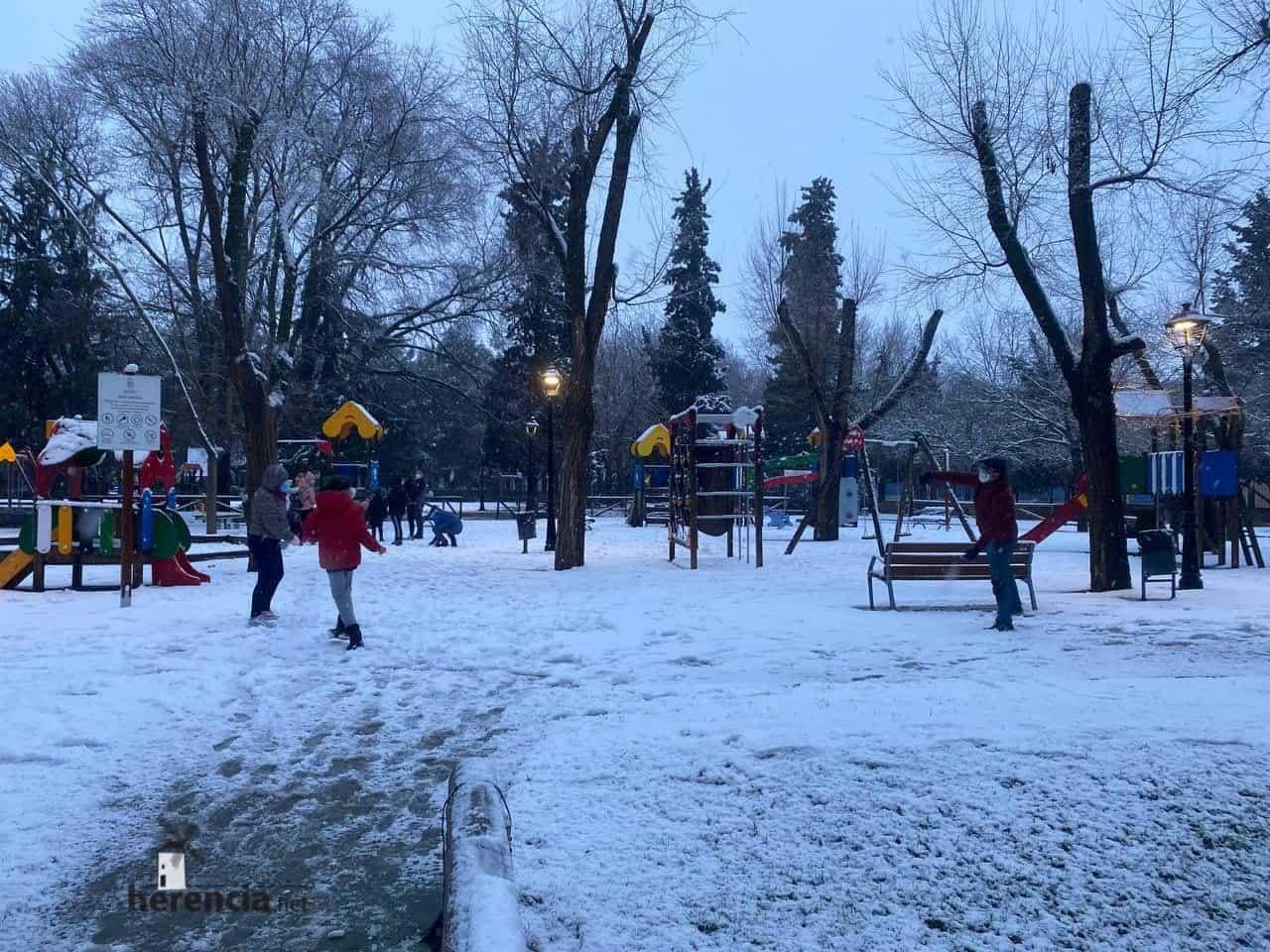 Fotografías de la nevada en Herencia (Ciudad Real) 55