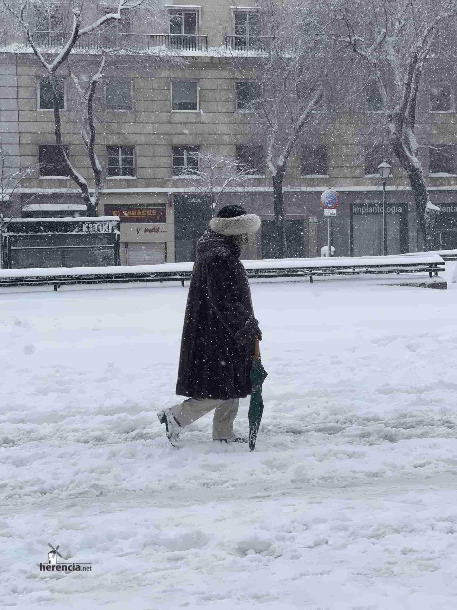 Fotografías de la nevada de enero en Madrid (España) 125