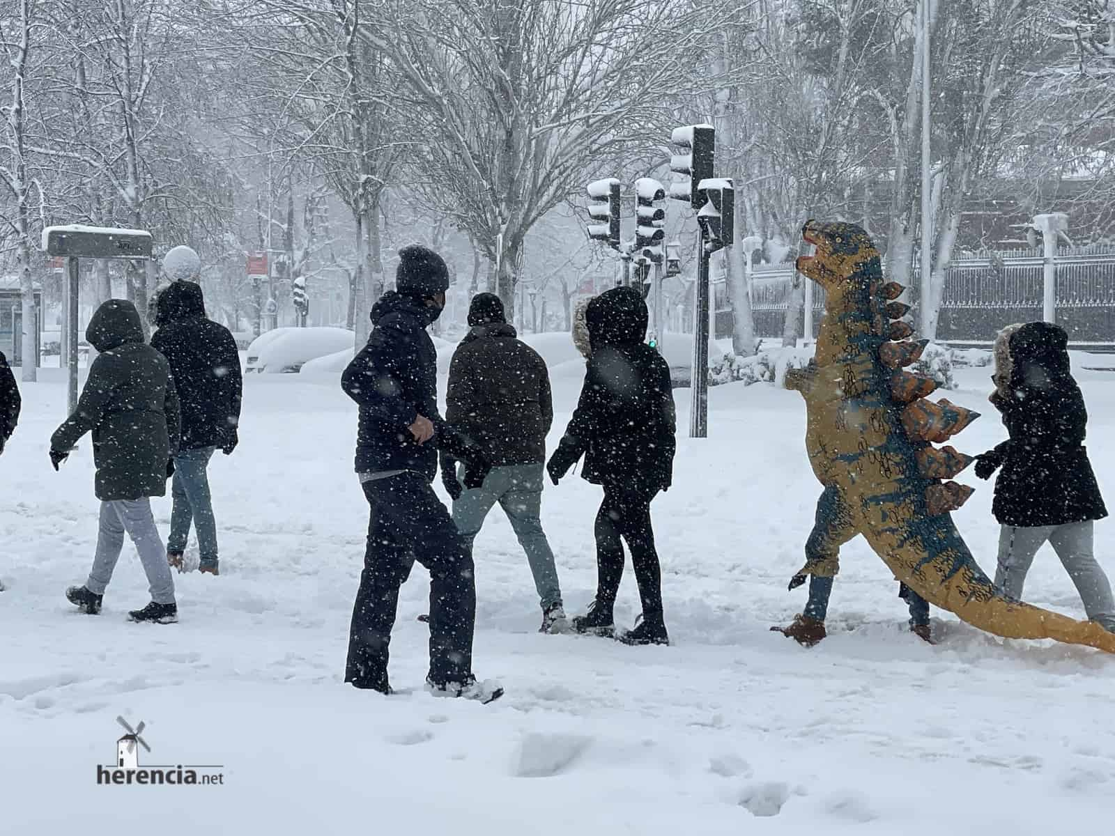 Fotografías de la nevada de enero en Madrid (España) 201