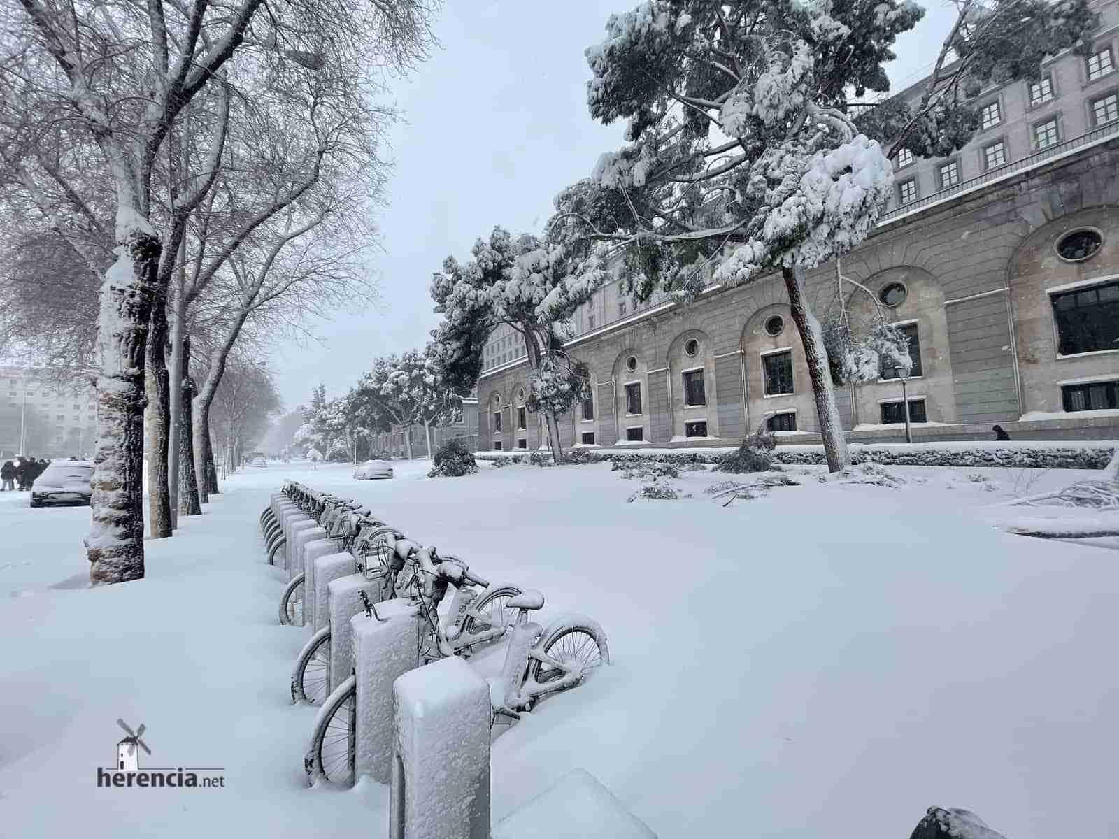 Fotografías de la nevada de enero en Madrid (España) 127