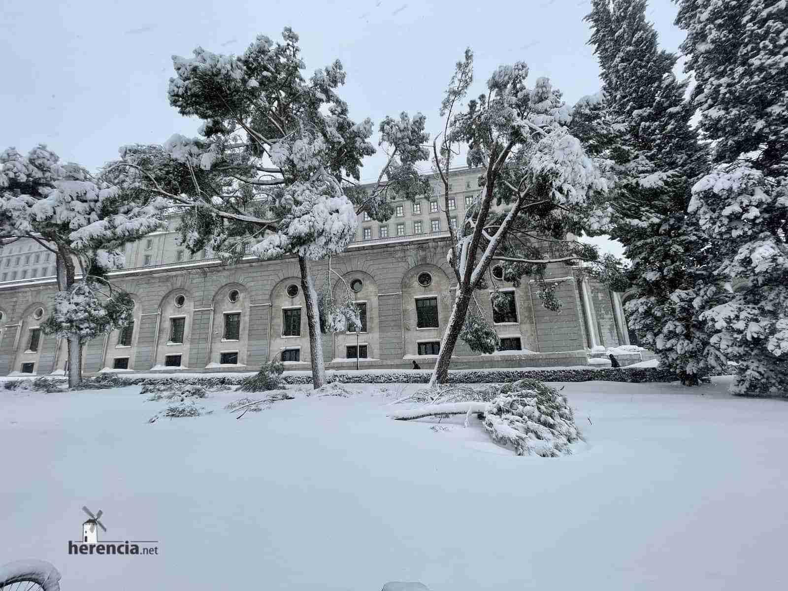 Fotografías de la nevada de enero en Madrid (España) 203