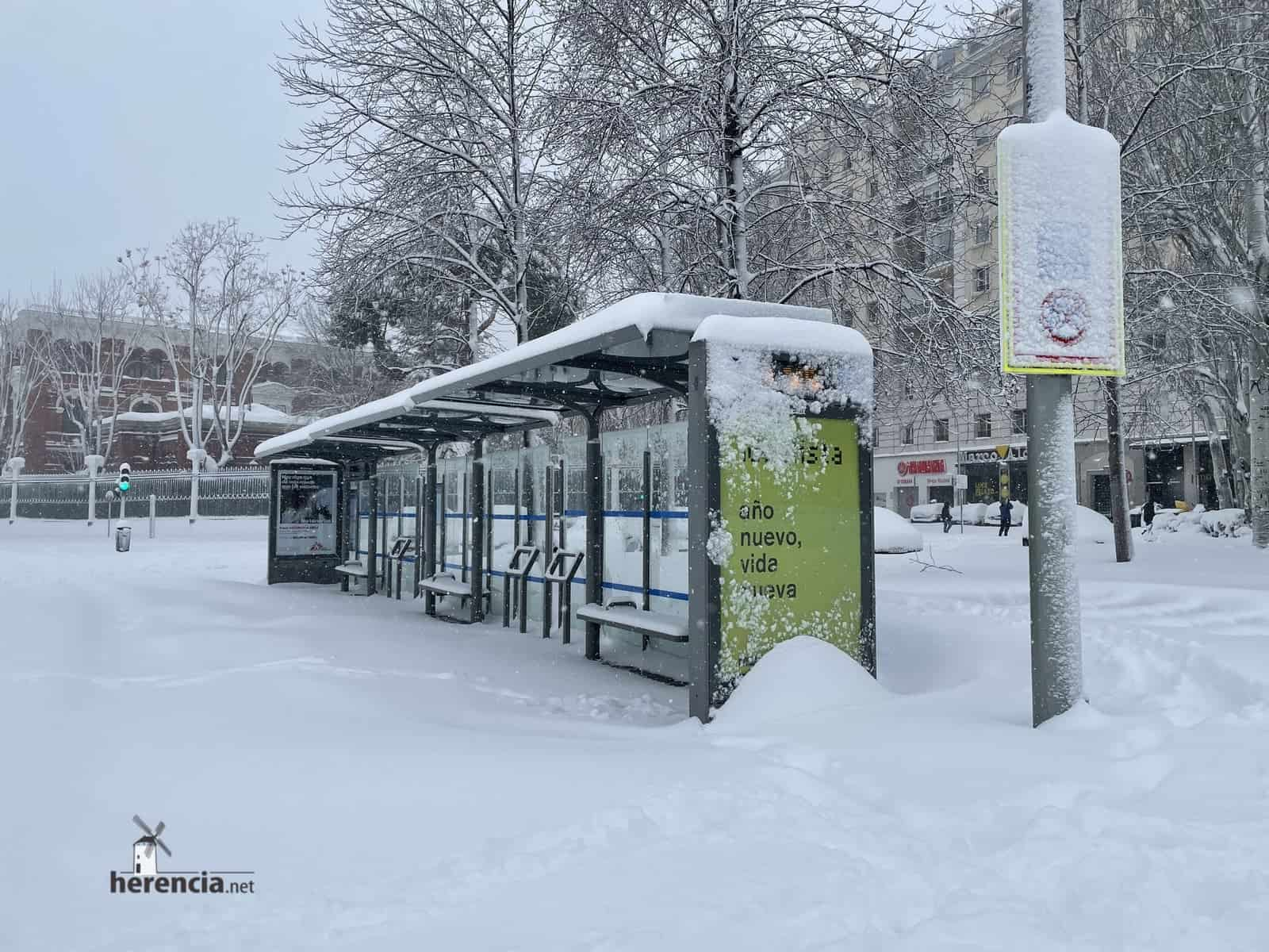 Fotografías de la nevada de enero en Madrid (España) 133