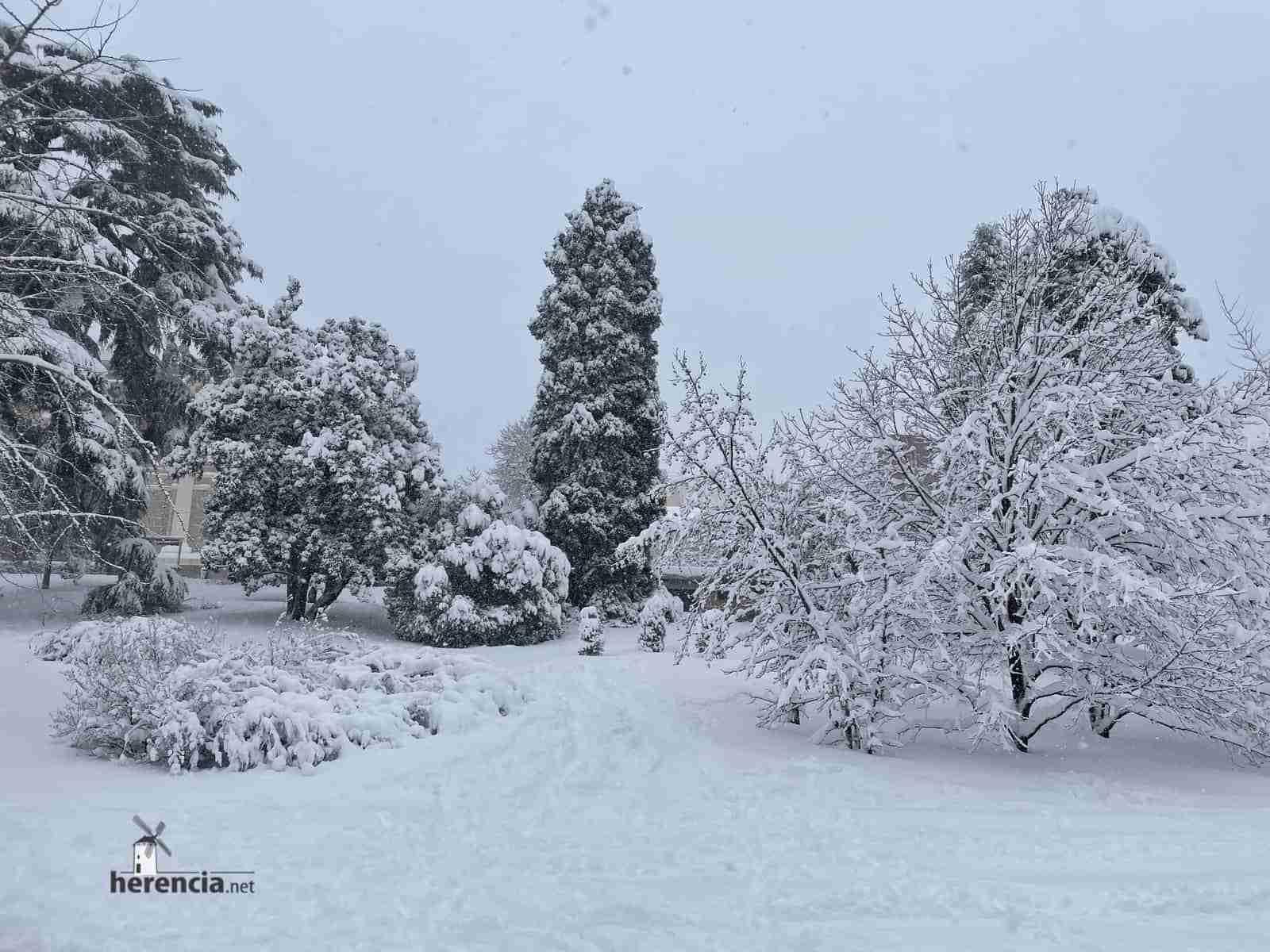 Fotografías de la nevada de enero en Madrid (España) 138