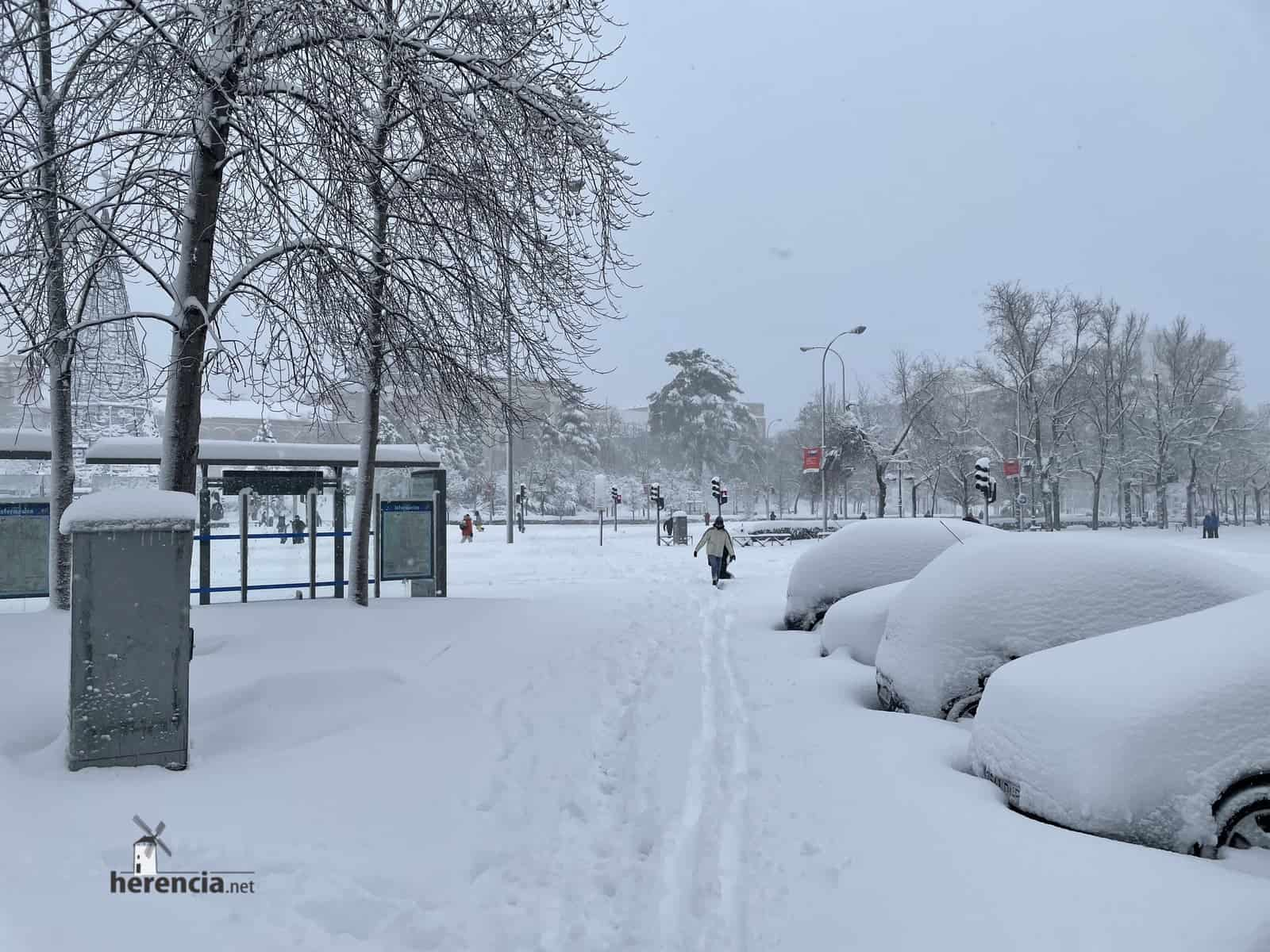 Fotografías de la nevada de enero en Madrid (España) 143