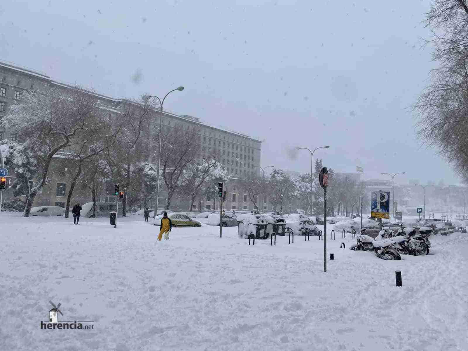 Fotografías de la nevada de enero en Madrid (España) 220